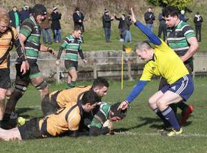 Junior Rugby Roundup