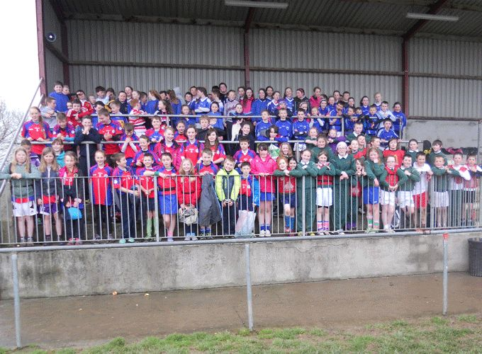 Boys and girls pictured at the Nenagh Ormond RFC Primary School Blitz